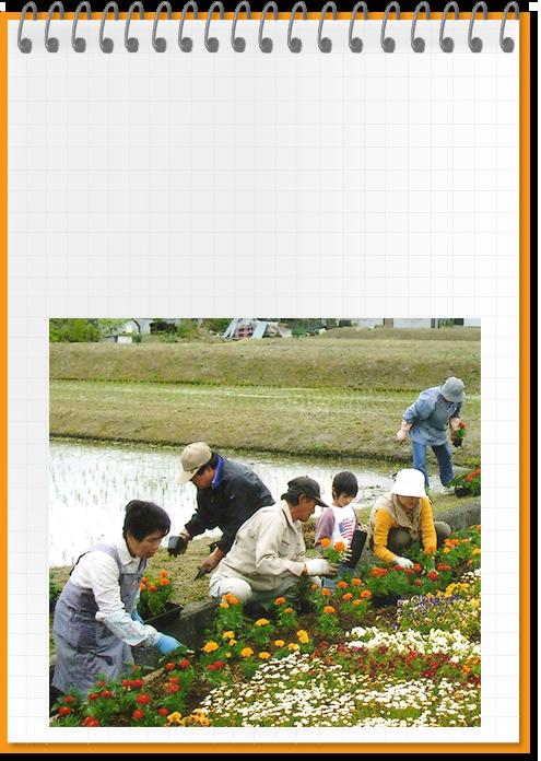 農村での景観形成